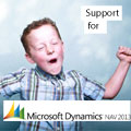 support for MS Dynamics NAV 2013