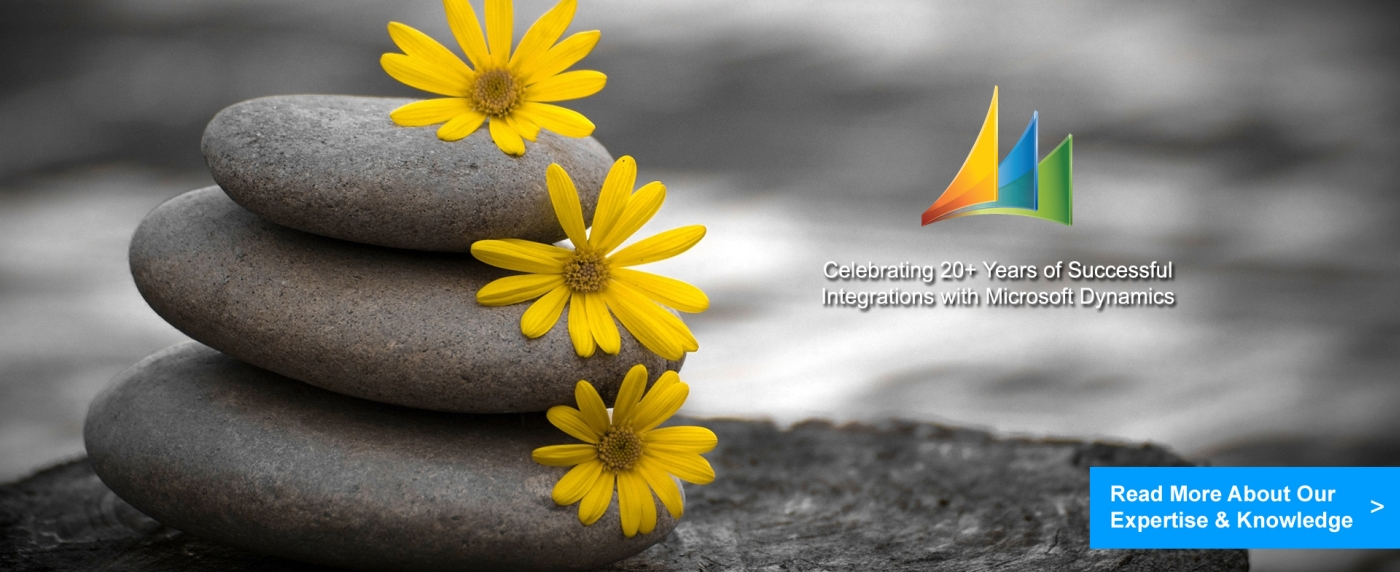 RapidiOnline - Celebrating 20+ Years of Successful Integrations