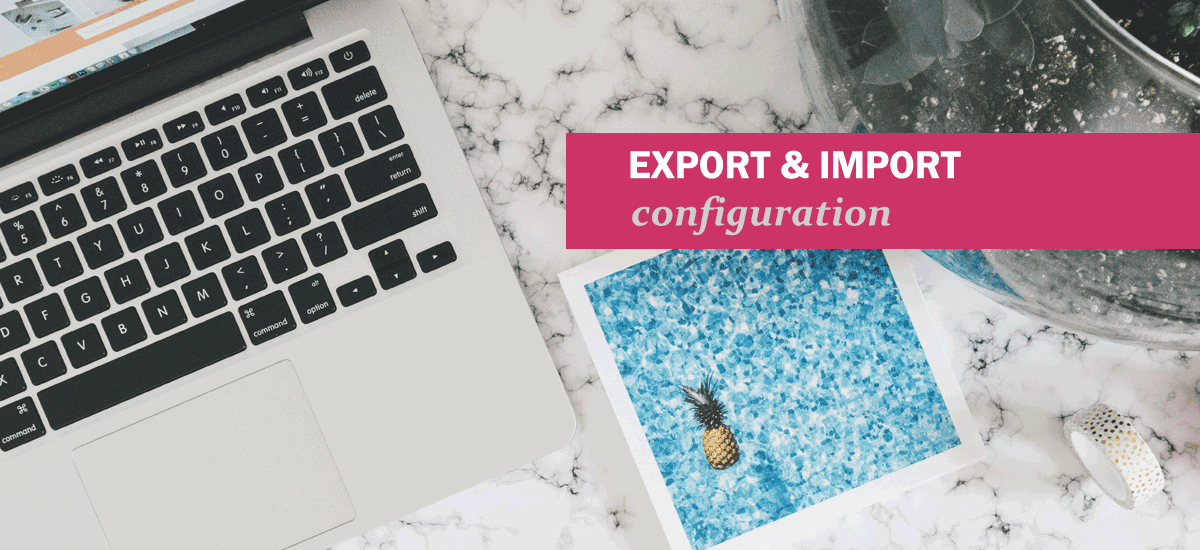 New Feature: Export and import RAPIDI configuration - JSON format