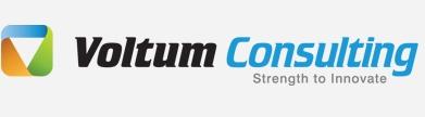 voltum-consulting